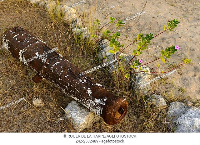 Old cannon and wild flowers. Ibo Island. Mozambique