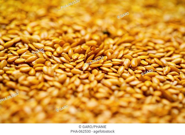 Golden flax seeds, rich in omega 3