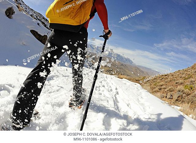 Snow shoeing up close, Inyo National Forest, California, USA