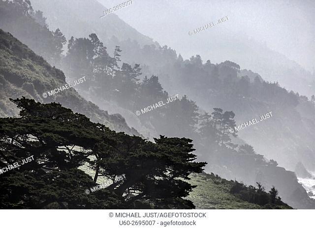 Fog rolls into the highlands along California's Pacific Ocean Coast at Big Sur