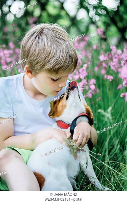 Little boy sitting with his dog on meadow in the garden
