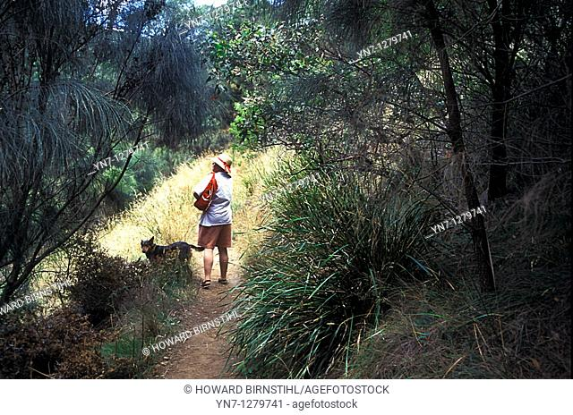 woman with dog on bush trail