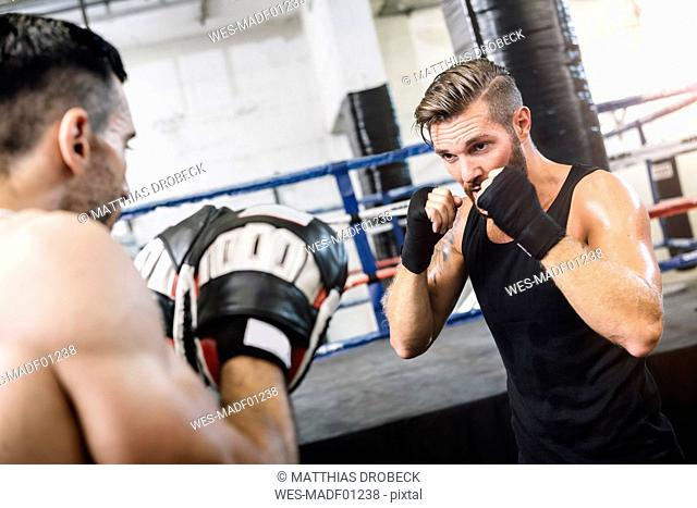 Boxer sparring with coach