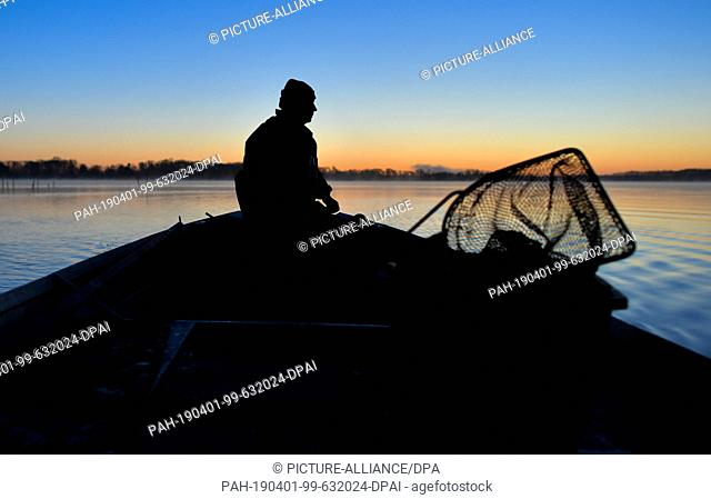 01 April 2019, Brandenburg, Groß Schauen: Laszlo Acz, fisherman of the fishery Köllnitz, drives before sunrise with his barge over the water of the Groß...