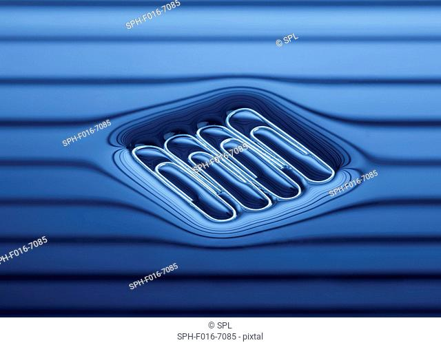 Four paperclips floating on the water surface