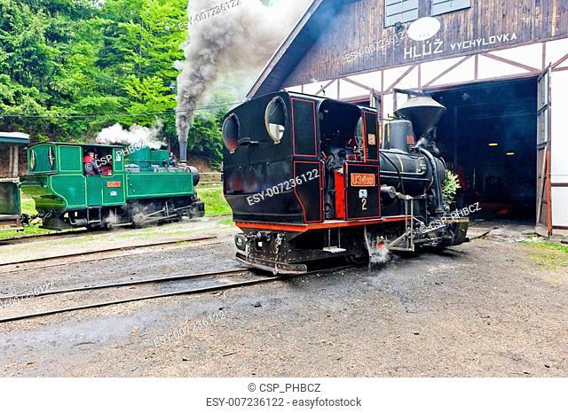 steam locomotives, Museum of Kysuce village, Vychylovka, Slovakia