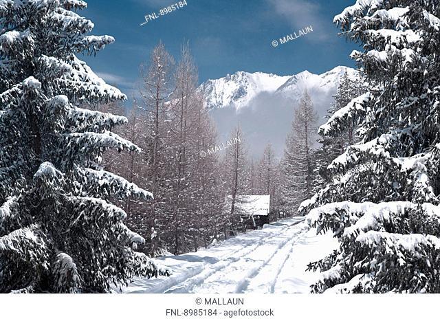 Winter landscape at Mieminger Plateau, Tyrol, Austria