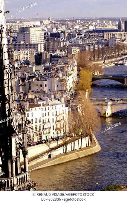 Aerial view of Ile Saint-Louis, Notre-Dame and the Seine River. Paris. France