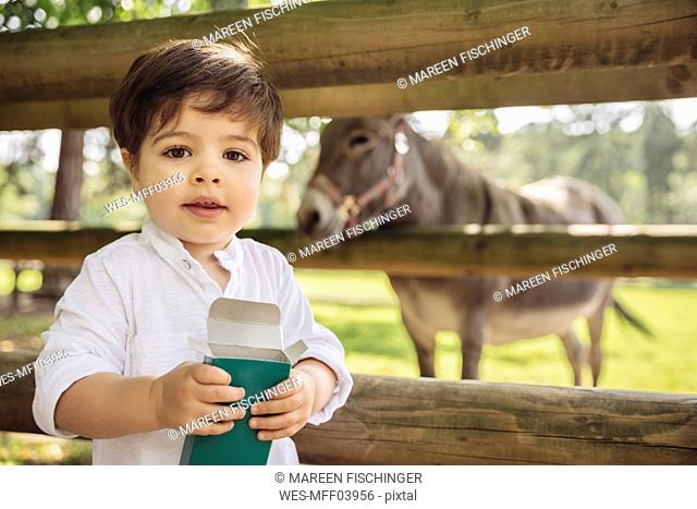 Portrait of toddler with box of animal food in wild park