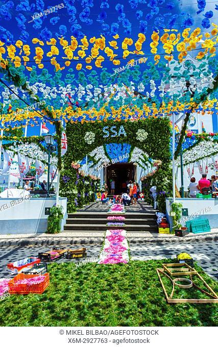 Flower carpet. Santana. Madeira, Portugal, Europe