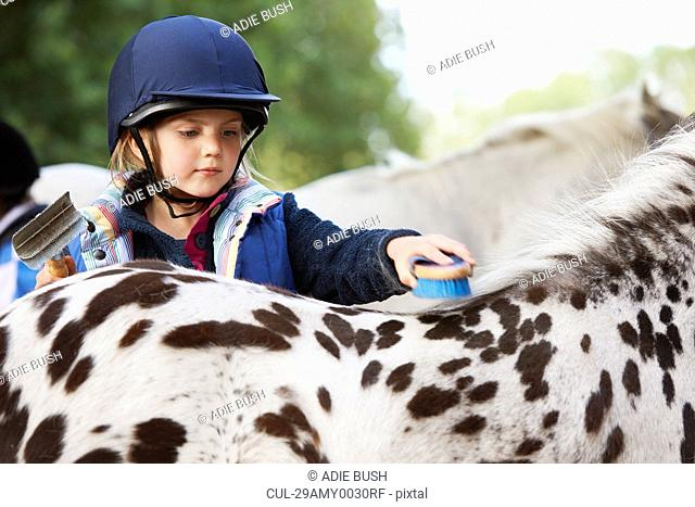 Young girl grooming her pony