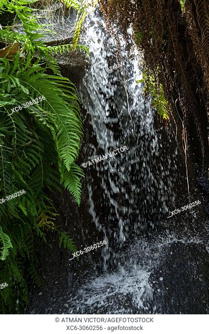 waterfall. Image taken in Palmetum garden. Tenerife, Canary islands, Spain