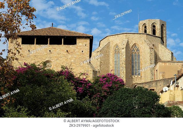 Royal Monastery of Santa Maria de Pedralbes (Barcelona)