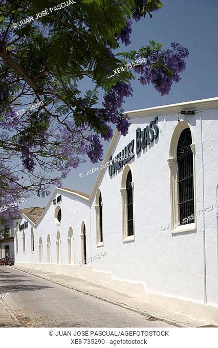 González Byass wineries, Jerez de la Frontera. Cadiz province, Andalucia, Spain