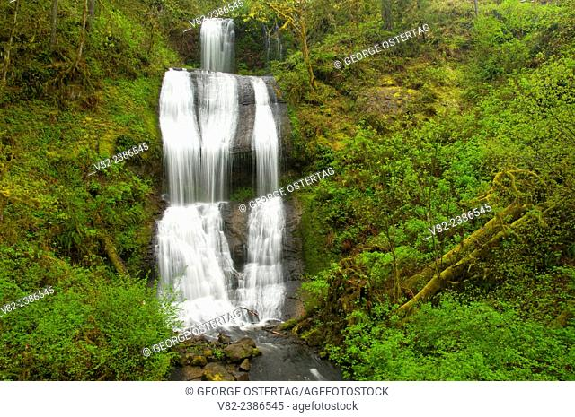 Royal Terrace Falls, McDowell Creek Falls County Park, Oregon