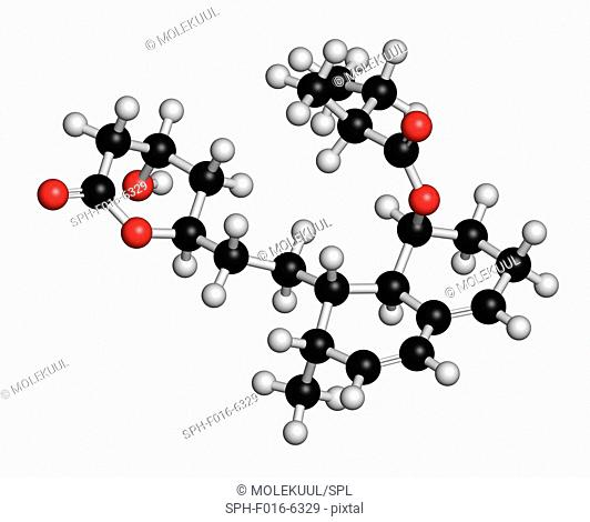 Mevastatin hypercholesterolemia drug molecule. Atoms are represented as spheres with conventional colour coding: hydrogen (white), carbon (black), oxygen (red)