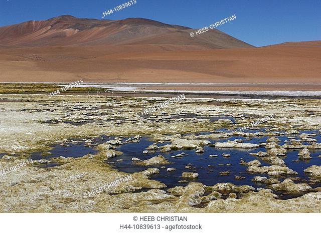 Chile, South America, Salar de Pujsa, Andes Mountains, near San Pedro de Atacama, Altiplano, Antofagasta, landscape, S