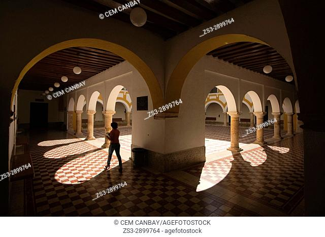 Silhouette of a woman inside the Campeche Institute, Campeche City, Campeche State, Mexico, Central America