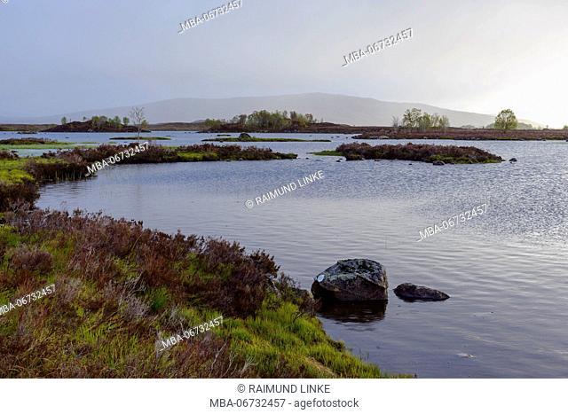 Moor landscape with heavily cloudy sky, Rannoch Moor, Scotland, United Kingdom