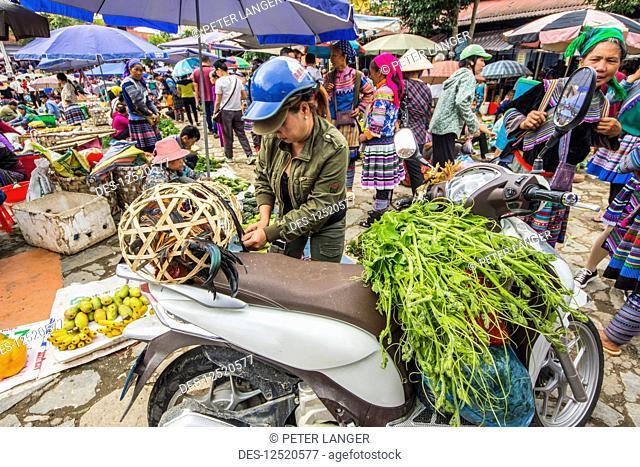Hmong woman loading her motorcycle at the Sunday market; Bac Ha, Lao Cai, Vietnam