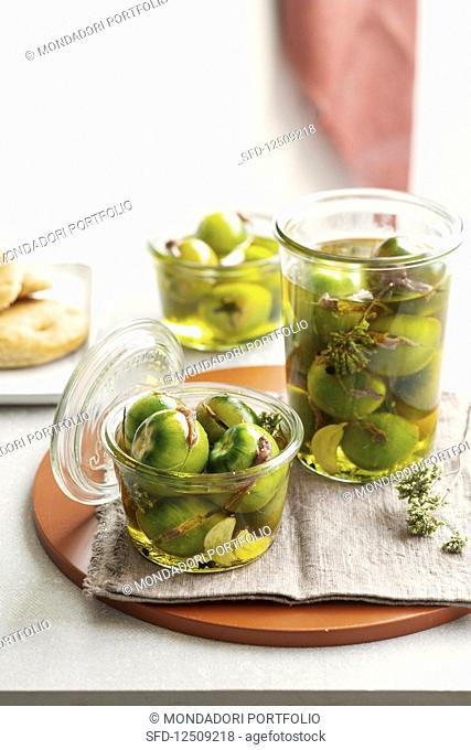 Green tomatoes filled with anchovies in olive oil