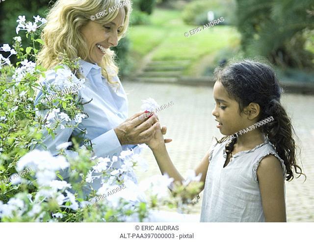 Mature woman handing granddaughter flower