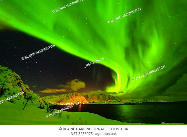 Dancing Northern Lights (Aurora Borealis) seen from along the E10 near Reine, Moskenoesoya Island, Lofoten Islands, Arctic, Northern Norway