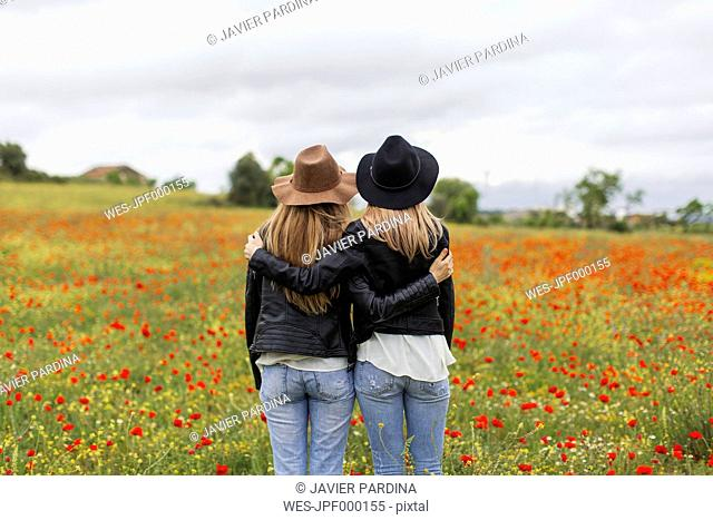 Two woman standing on a poppy field, embracing