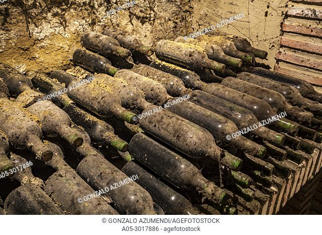 Miranda winery. ( Private Cellar ). Briones. La Rioja. Spain