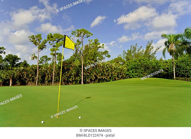 Golf balls by hole on putting green
