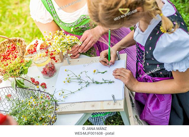Germany, Saxony, girl wearing dirndl learning to draw plants