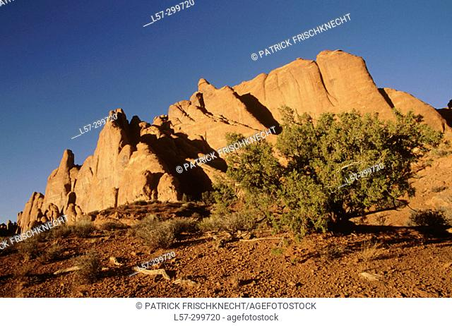 Sunsuet at Arches National Park in Utah, USA