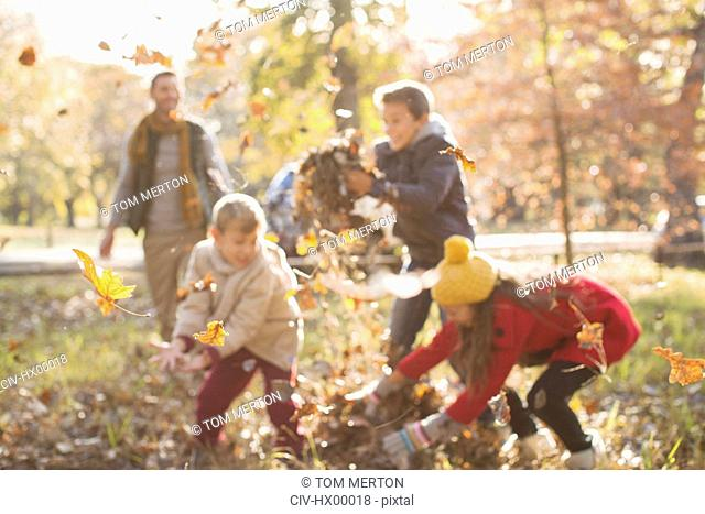 Family playing in autumn leaves at park