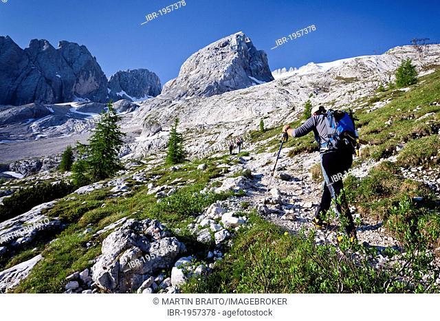 Mountain climber ascending towards Marmolada Mountain on the Westgrat climbing route, Trentino, Dolomites, Italy, Europe