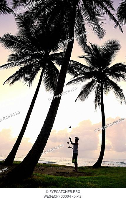 Dominican Rebublic, man juggling between palm trees at sunset