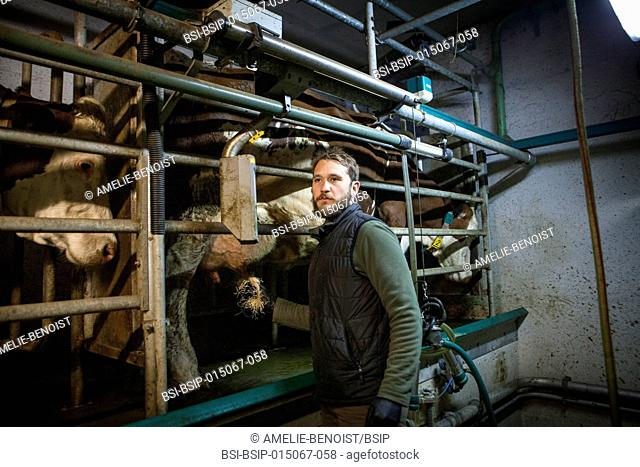 Reportage on organic producers working using a community-shared agriculture model in Haute-Savoie, France. Jean-Philippe has been an organic cattle and pig...