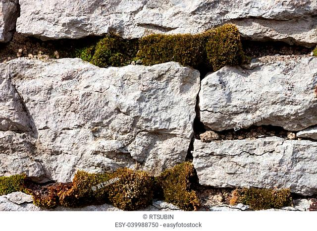 Old stone wall with moss and lichen background