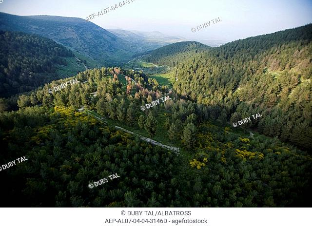 Aerial photograph of Biriya forest in the Upper Galilee