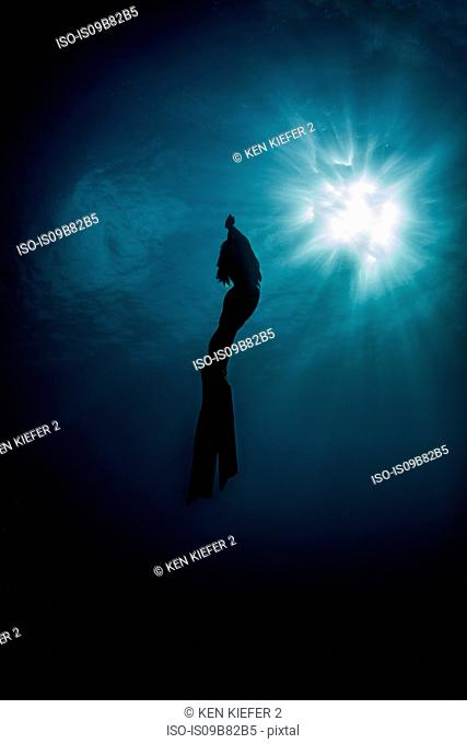 Underwater view of silhouetted female free diver moving up towards sun rays, New Providence, Bahamas