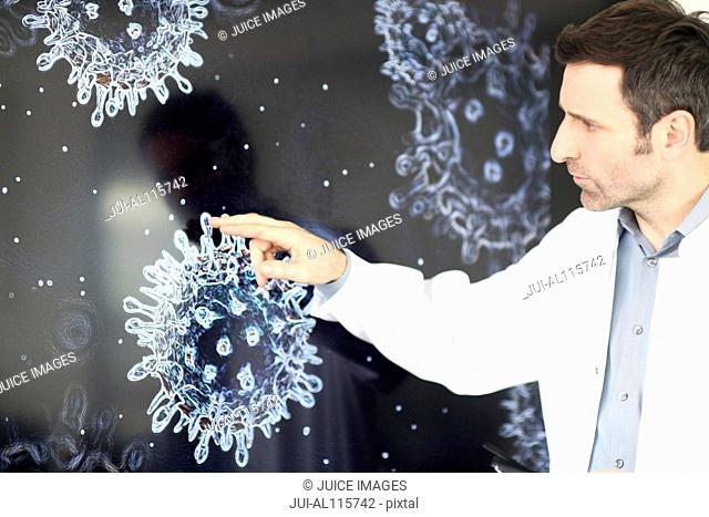 Scientist studying virus on screen