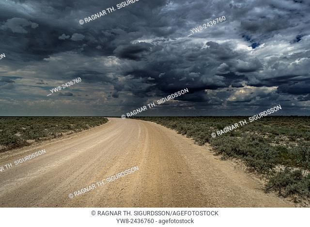 Road in Etosha National Park, Namibia, Africa