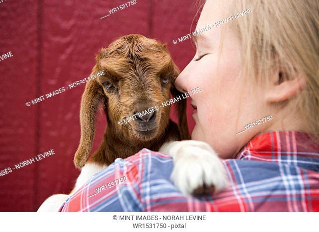A girl cuddling a baby goat