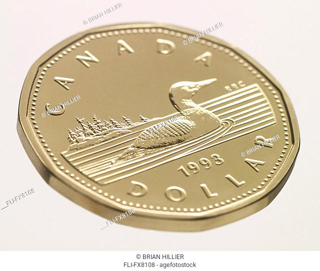 Close up of a Canadian Loonie