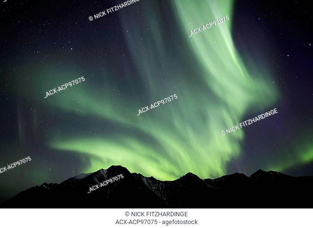 The aurora borealis covering the night sky, Tombstone Territorial Park, Yukon Territory, Canada