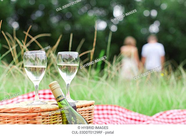 Glasses of wine at picnic
