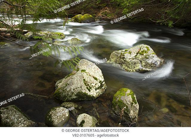 Badger Creek, Badger Creek Wilderness, Mt Hood National Forest, Oregon