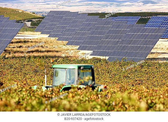 Vineyards and solar panels, photovoltaics, solar power plant, Milagro, Navarre, Spain