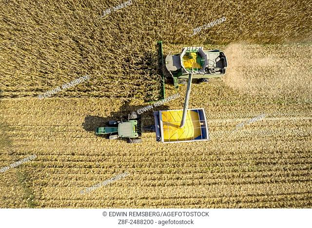 Aerial view of combine harvesting corn in a field near Jarrettsville, Maryland, USA