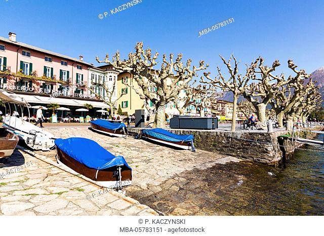 Plane trees at the waterside promenade in front of boats and restaurants, Lago Maggiore, Ascona, Ticino, Switzerland, Alps