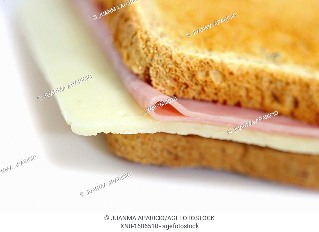 Ham and cheese sandwich on whole wheat bread